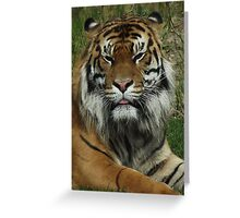 The True King of the Jungle Greeting Card
