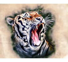 Yawn Photographic Print
