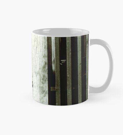 Architectural Detail Mug