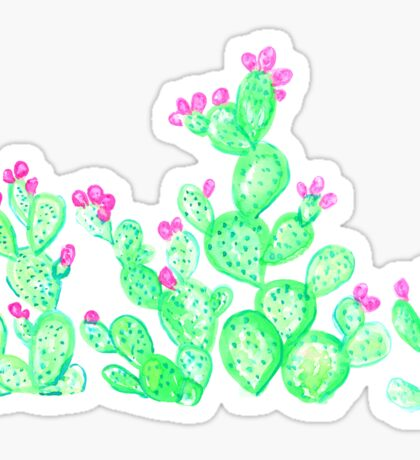 Prickly Pear Spring - White Sticker