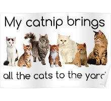 My Catnip Brings All The Cats To The Yard Poster