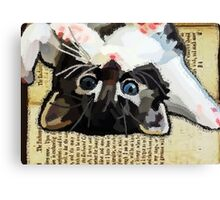 Kittens and books Canvas Print