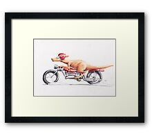 'The 'roo heading out.' Framed Print