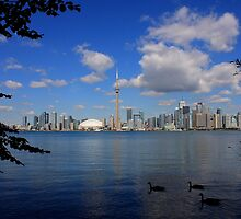 Toronto From the Islands by Eric Smith
