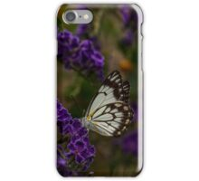 Male Caper White Butterfly iPhone Case/Skin