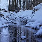 Cool Winter Stream by Jamie Cameron