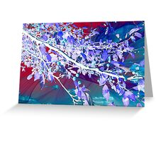 Flamboyant Nature Greeting Card