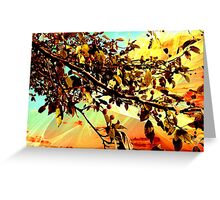 Flamboyant Nature 2 Greeting Card