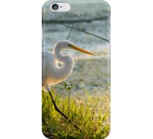 Luminous Egret  iPhone Case/Skin