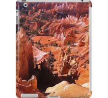 Most beautiful place on Earth iPad Case/Skin
