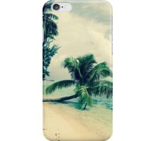 Stormy Paradise iPhone Case/Skin