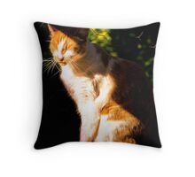 Solar Charge Throw Pillow
