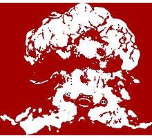 Ziggs Explosion Color Photographic Print