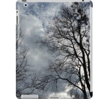 empty nests iPad Case/Skin