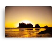 sunset gold, james island, washington, usa Canvas Print