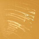 Scratches. III by Bluesrose