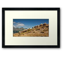 Show me your behind Framed Print