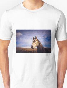 An Irish Horse Unisex T-Shirt