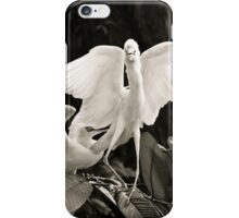 Cattle egret courtship display iPhone Case/Skin