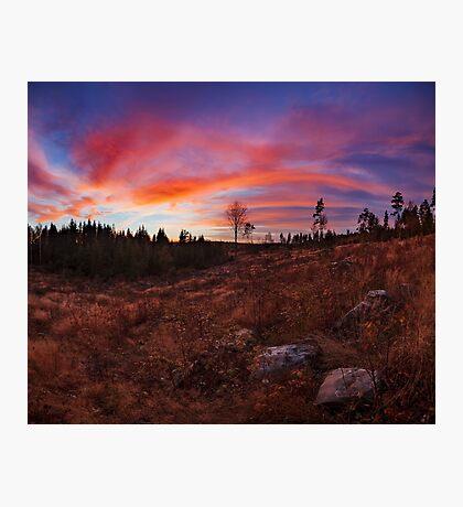 Beautiful vibrant sunset clouds landscape Photographic Print