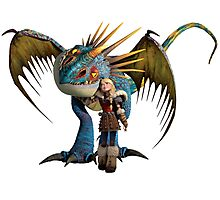 Astrid - How to Train Your Dragon 4 Photographic Print