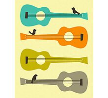 Birds on Guitar Strings Photographic Print