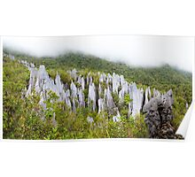 Limestone pinnacles at gunung mulu national park Poster