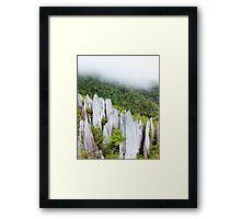 Limestone pinnacles at gunung mulu national park Framed Print
