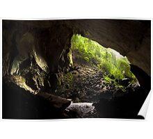Deer cave gunung mulu national park Poster