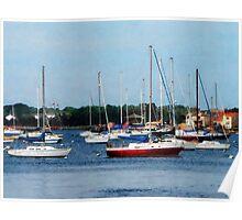 Group of Sailboats Newport RI Poster