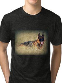 Straw Dog! Tri-blend T-Shirt