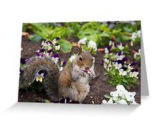 Cute flowerbed squirrel Greeting Card