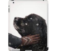 Woman gratify big newfoundland dog, snowy weather iPad Case/Skin