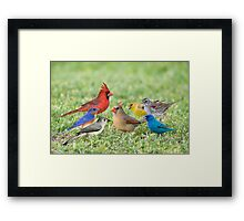 Little Flock of Songbirds Framed Print