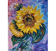 That Sunflower From The Sunflower State Photographic Print