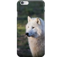 Canus Lupus Arctos II iPhone Case/Skin