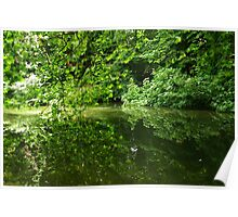 Reflection of Trees on Water Poster