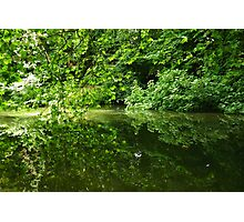 Reflection of Trees on Water Photographic Print