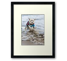 This is NOT Fun... Framed Print