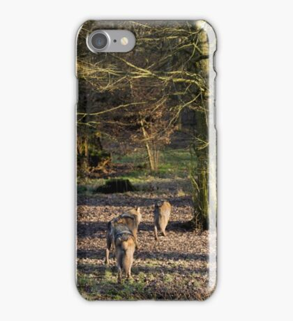 Canis Lupus Lupus iPhone Case/Skin