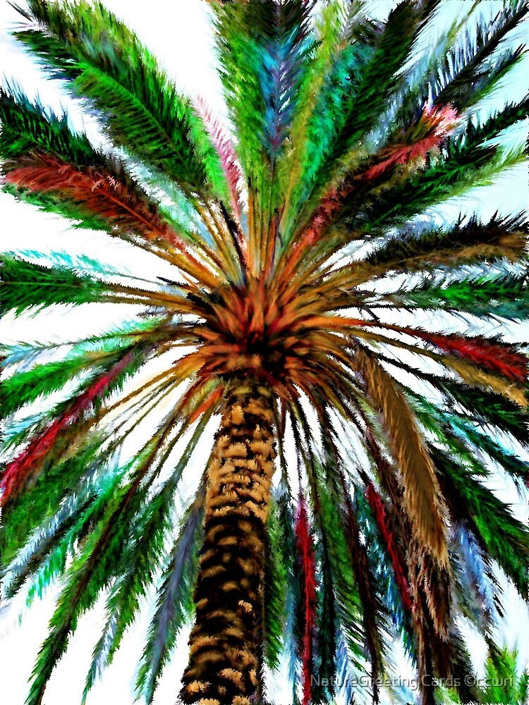 Rainbow Palm by NatureGreeting Cards ©ccwri