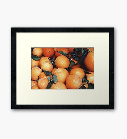 Oranges (Valencia) Framed Print
