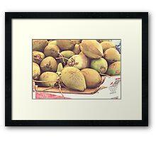 coco frio Framed Print