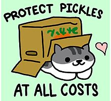 Pickles Protection Squad Photographic Print