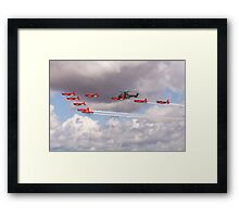 Swiss Display Framed Print