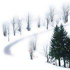 Snowflakes by Imi Koetz