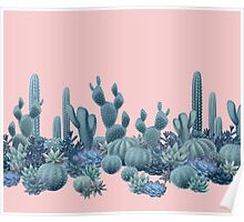 Serenity Cacti on Rose Quartz Background Poster