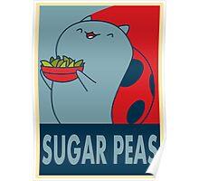 Catbug for President Poster