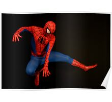 Spider Man Cosplay  Poster