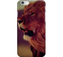 Lion in the breeze iPhone Case/Skin